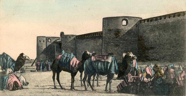 Старинные открытки Кавказа: Верблюды в Баку и на Абшероне (ФОТО)
