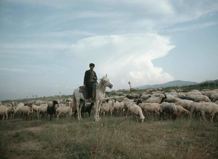 Губа, Абшерон, Сумгаит в 1967 г. глазами шведского фотографа Г.Одднера (ФОТО)