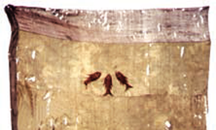 О трех рыбах на штандарте гянджинского Джавад хана