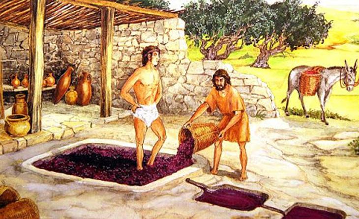 Развитие виноградарства и виноделия на территории Азербайджана в IV в. до н.э. - III в. н.э.