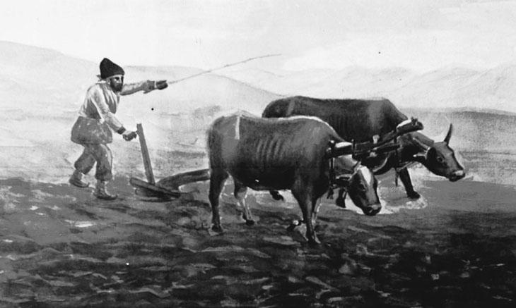 Земледелие и хлебопечение у азербайджанцев Дагестана в XIX – начале XX вв.