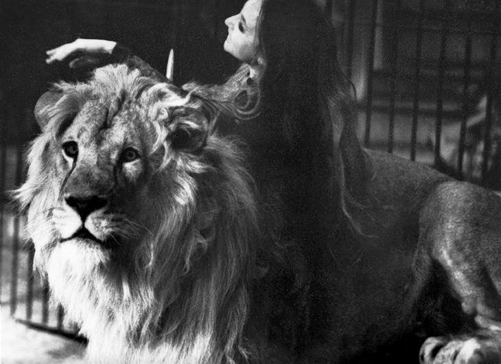 Животные на арене бакинского цирка в 1970-1989 гг. - часть 2 (ФОТО)