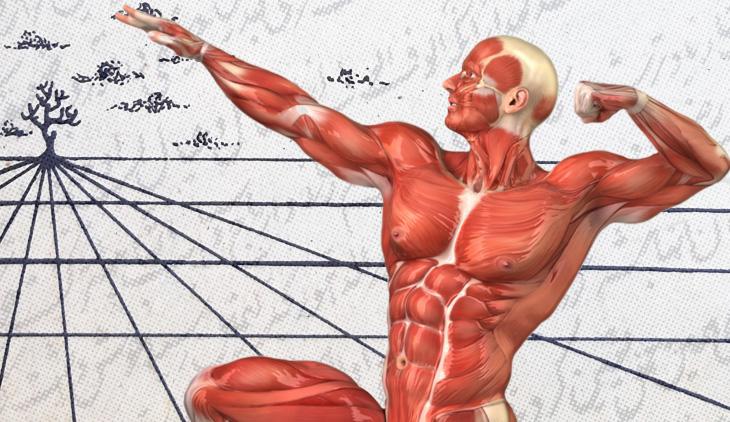 Физиология человека по трудам врача-азербайджанца первой пол. XIX в.