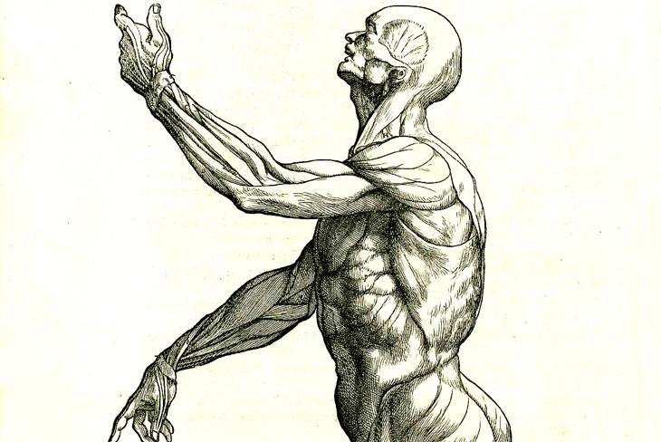 Азербайджанец М.Табризи: первый врач Ирана, изучавший анатомию на трупах