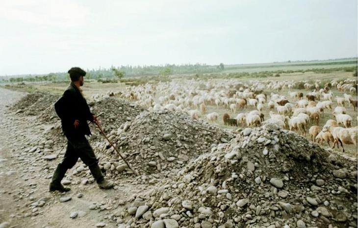 """Что привело к ликвидации """"бесперспективных"""" деревень в Азербайджане 1950х-1960х гг."""