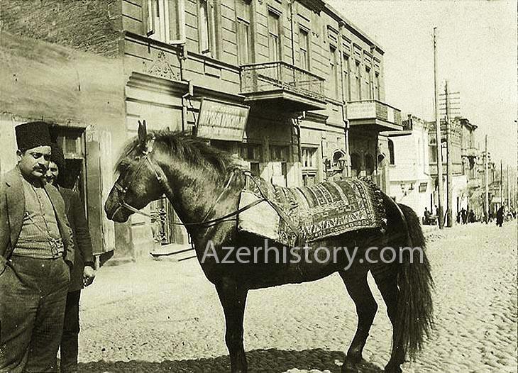 Бакинские лошади на снимках 1880-1990-х годов (ФОТО)