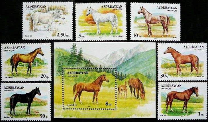 Лошади на азербайджанских марках: от карабахских до якутских (ФОТО)